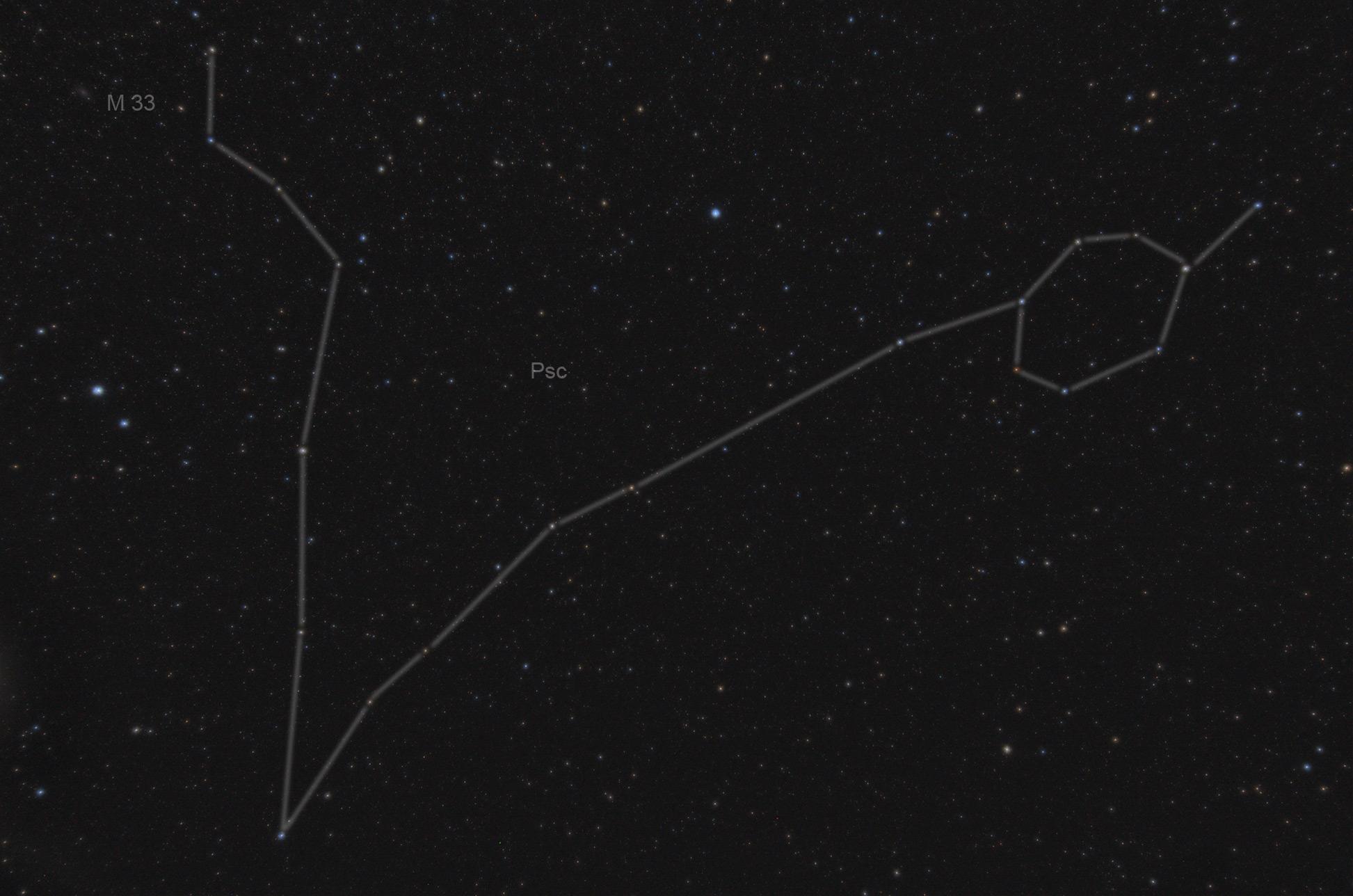 фото космоса рыбы созвездие из
